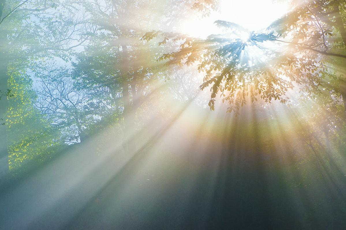 фотографии как фотографировать лучи света начала расскажу